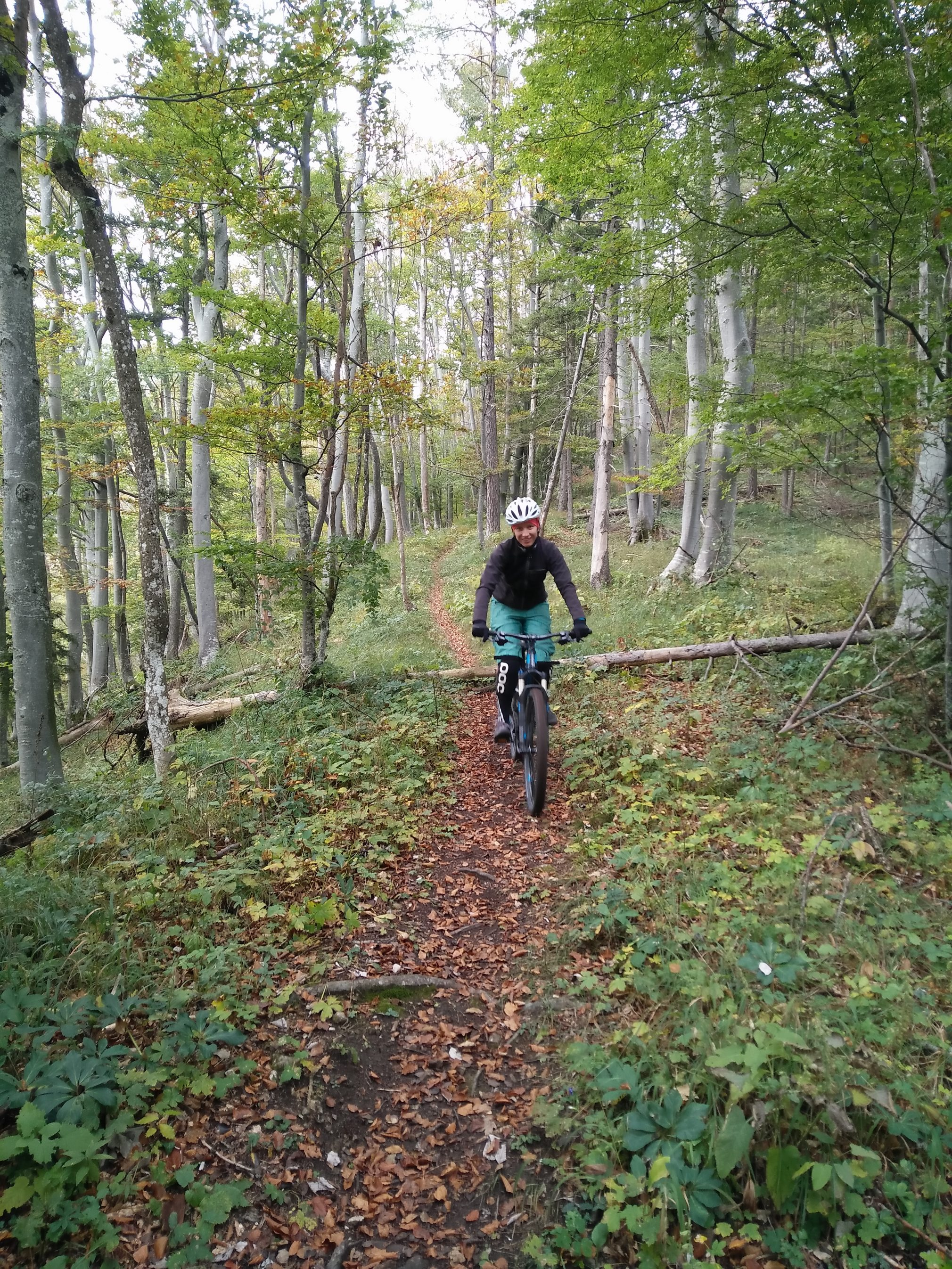 kolesarska pot na Sumik