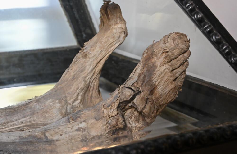 mumija mihaela hadika lendava